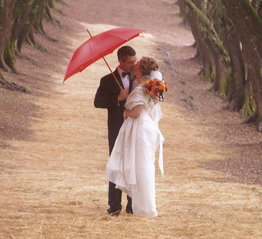 Wedding photo of Hugh and Monique Davies kissing under a red umbrella in the olive grove.