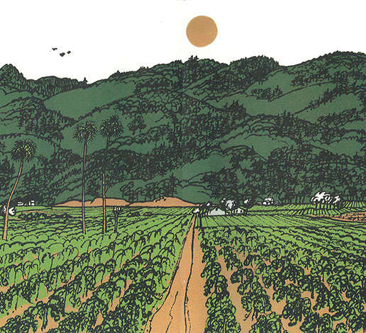 Color lithograph of vineyard and mountain in the Napa Agricultural Preserve