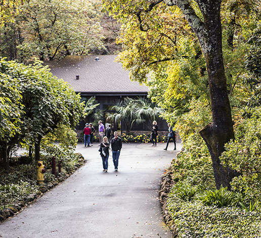 Guests strolling on Schramsberg's front walk and into the visitors center entrance