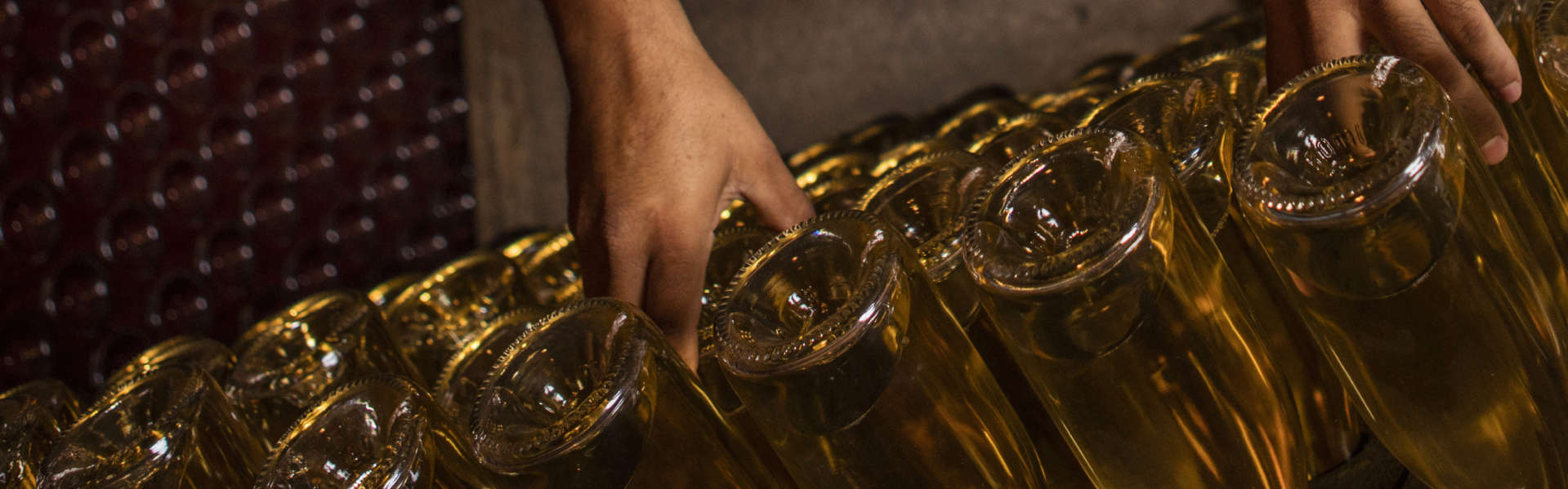 Cellar worker's hands riddling bottles in the wine caves