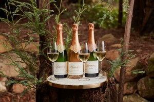 Three bottles of sparkling wine and glasses set in woods